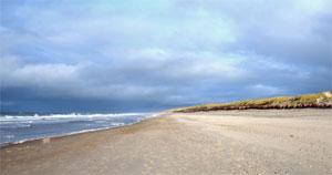 Am Strand entstehen neue Ideen